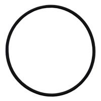 Кольцо резиновое 67,95х2,62(3268) для помпы E3B2515 R